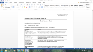 SOC100 Social Structure Matrix   Documents and Forms   Research Papers