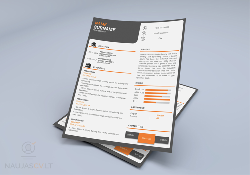 First Additional product image for - Resume template + cover letter