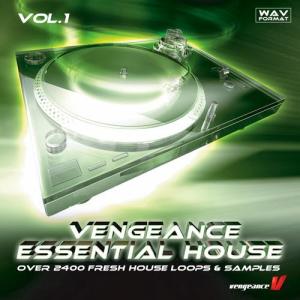 vengeance essential house vol.1