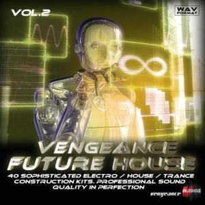 vengeance future house vol.2