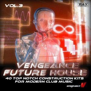 vengeance future house vol.3
