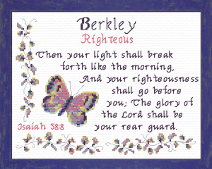 Name Blessings - Berkley | Crafting | Cross-Stitch | Other