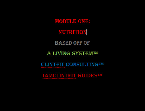 First Additional product image for - Module One: Nutrition  - IamClintFit Guide