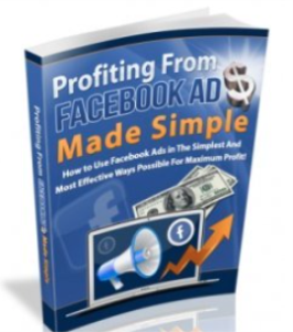 profiting with facebook ads