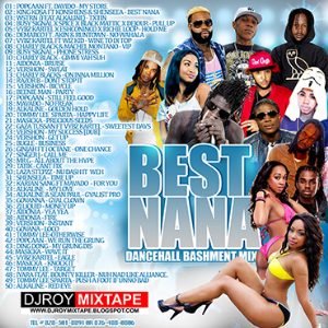 Dj Roy Best Nana Bashment Dancehall Mix | Music | Reggae