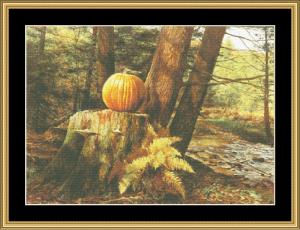pumpkin pines