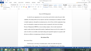 Essay for HR management | Documents and Forms | Research Papers