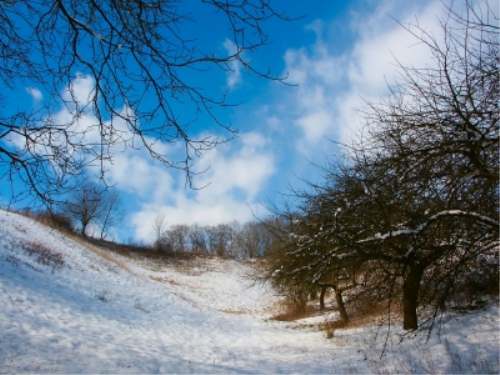 First Additional product image for - Winter Landscape