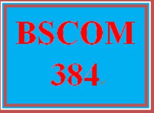 bscom 384 week 2 marketing communications process