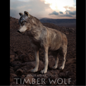 timber wolf for poser and daz studio