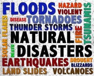 Emergency Preparedness Notebook | eBooks | Business and Money