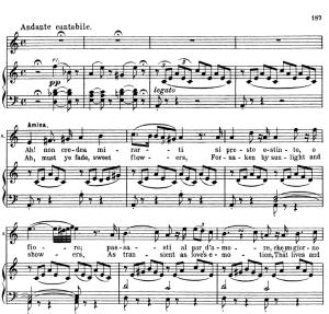 Oh se una volta...Ah non credea mirarti. Recitative and Aria for Soprano (Amina). V. Bellini: La Sonnambula, Ed. Schirmer  (1902), Italian/English. | eBooks | Sheet Music