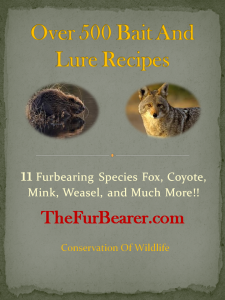 500 trapping recipes e-book pdf