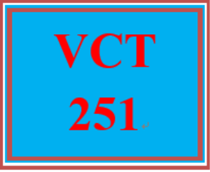 vct 251 week 3 individual: product advertisement