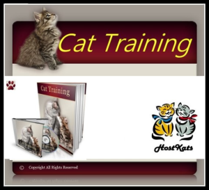 Cat Training! | eBooks | Pets