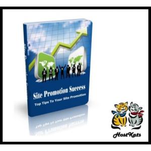 web site promotion success