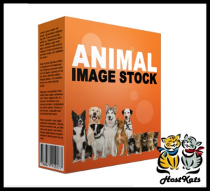 animal stock images