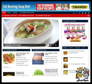 wordpress / soup diet turnkey blog - includes web hosting on our namecheap server