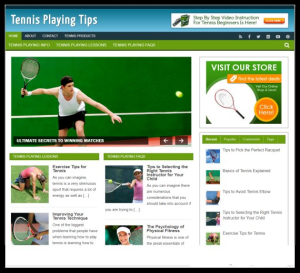 wordpress / tennis niche plr blog - includes web hosting on our namecheap server