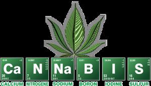 how to know you have a marijuana addiction problem