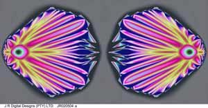 prepared by j r digital designs, insect, 1.03x0.51m, jr020504a