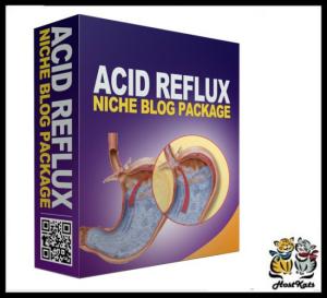 acide reflux plr niche blog
