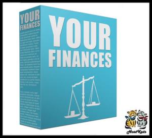 your finance plr content - 25 plr articles