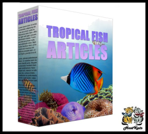 tropical fish plr content - 10 plr articles