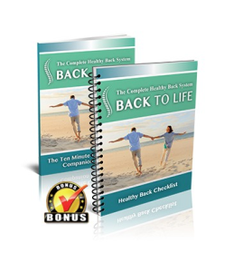back to life,back to life - 3 level healthy back system