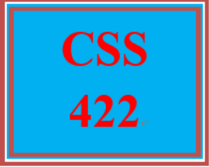 css 422 week 5 learning team: system modeling