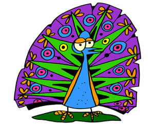colored peacock illustration