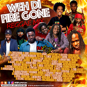 dj roy weh di fire gone reggae mix