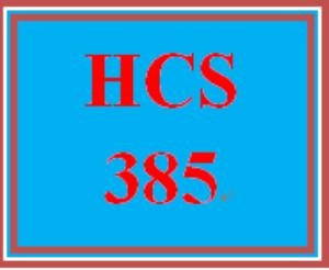 hcs 385 week 4 week four financial performance worksheet