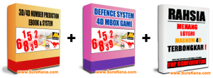 4D FOUNDATION LEVEL : THE DEFENCE SYSTEM - TIMING FORMULA (SureKena) | Software | Training