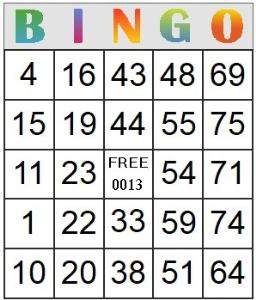 bingo card 13