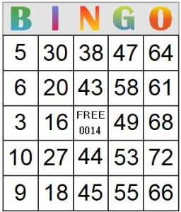 bingo card 14