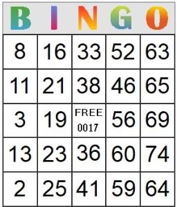 bingo card 17