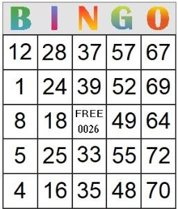 bingo card 26
