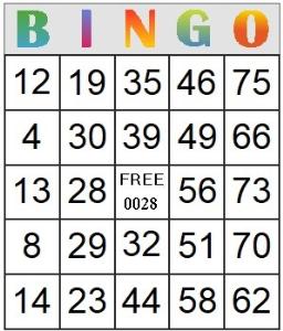 bingo card 28