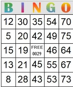bingo card 29