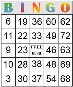 bingo card 30