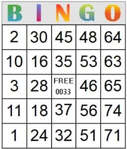 bingo card 33