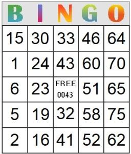 bingo card 43