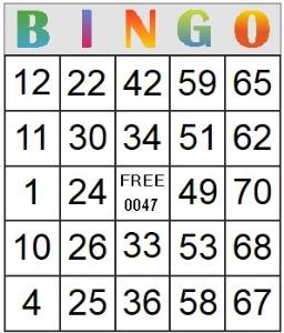 bingo card 47