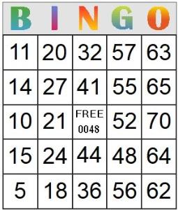 bingo card 48