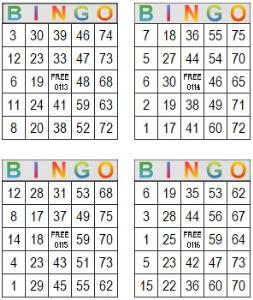 bingo multi card 113-116