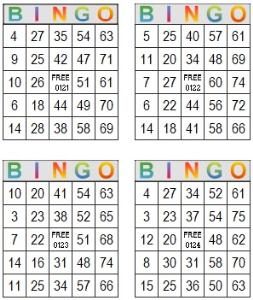 bingo multi card 121-124