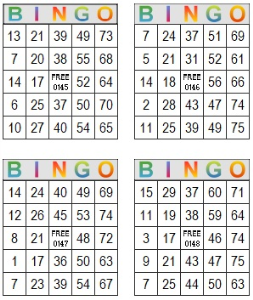 bingo multi card 145-148