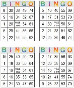 bingo multi card 157-160