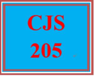 cjs 205 week 1 communication in criminal justice settings paper
